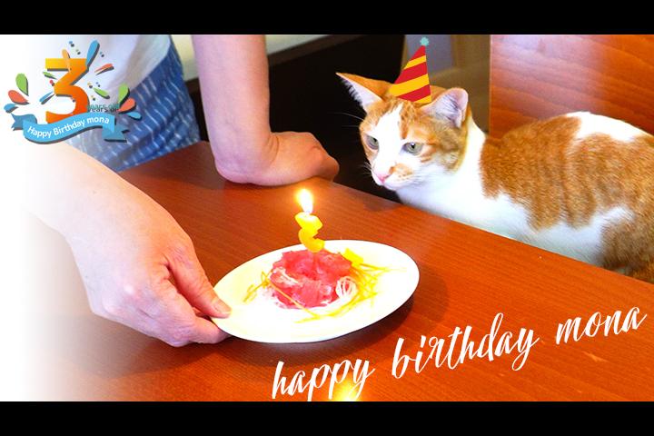 モナの3歳の誕生日